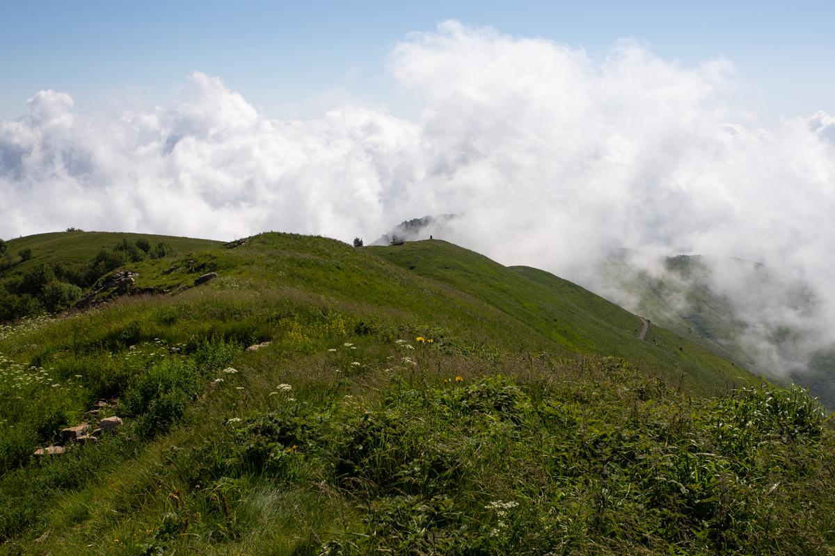 Monte Monega_0036